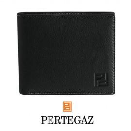 CARTERA -PERTEGAZ-*